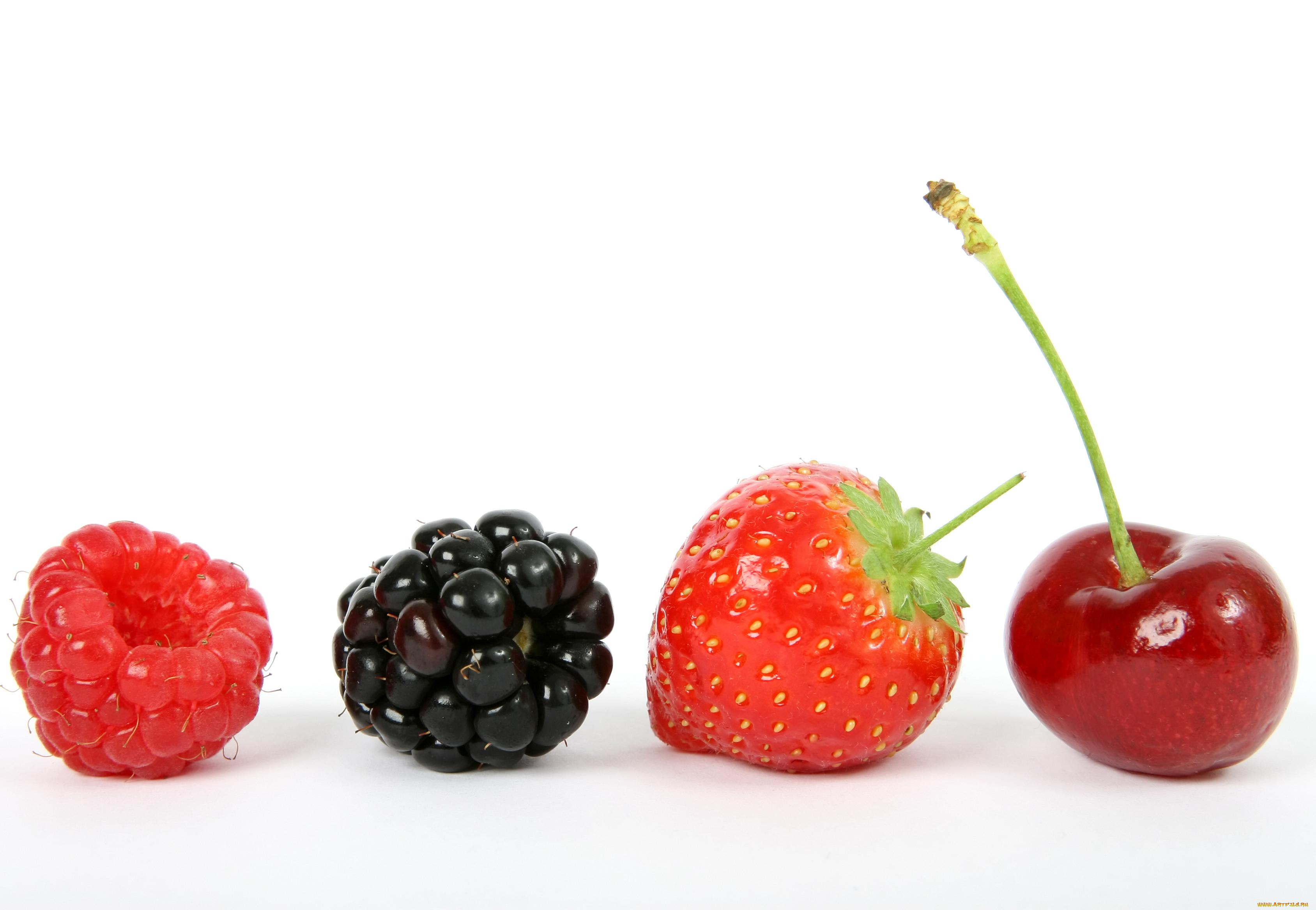 картинки для сайта ягодки сказала, меня часто